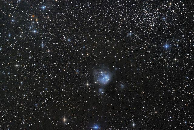 NGC 7129, Reflection Nebula in Cepheus